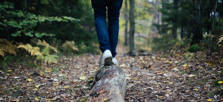 walk talk counselling therapist